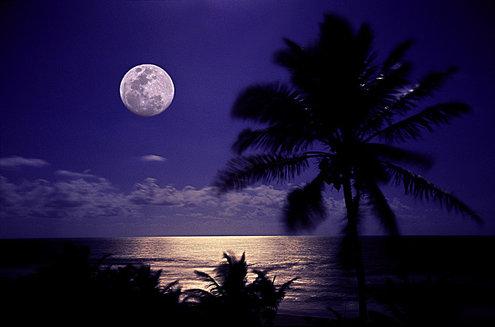 POEMAS SIDERALES ( Sol, Luna, Estrellas, Tierra, Naturaleza, Galaxias...) - Página 26 ?id=471647&maxw=495&maxh=660