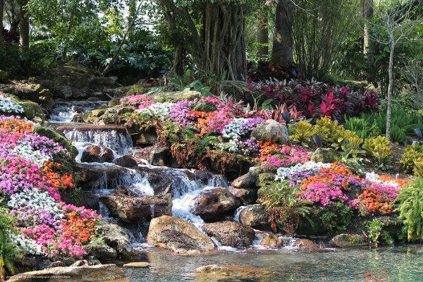 No terceiro dia Deus criou as flores Pois juntou as águas debaixo dos céus E quando apareceu a porção seca Terra Nasceram as primeiras sementes e ervas Então, o porquê do colher dessas flores? Se mortas na mão lixo serão Se secas perderão suas cores