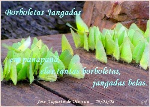 autor: José Augusto de Oliveira __(Recanto das Letras)