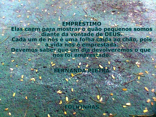 FOLHAS CAÍDAS AO CHÃO, PODEM SER FONTE DE INSPIRAÇÃO