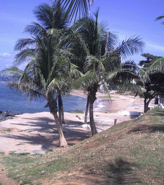 SALVADOR BAHIA, VERÃO, 24DE FEVEREIRO DE 2011