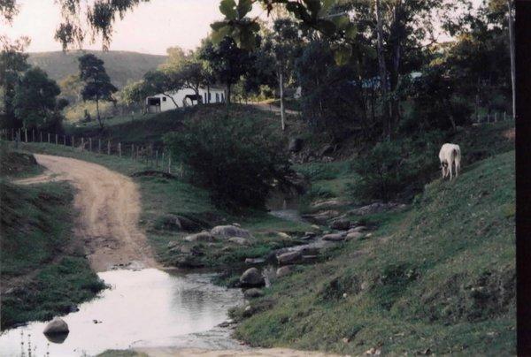 Paisagem rural tão comum em Tanguá.