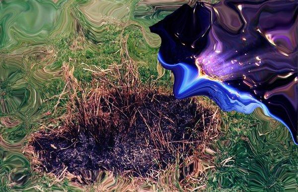 Pessoas extraordinárias são meteoros designadas para se incendiar de modo que a Terra possa ser iluminada. (Napoleão Bonaparte)(autor foto:Roangas)